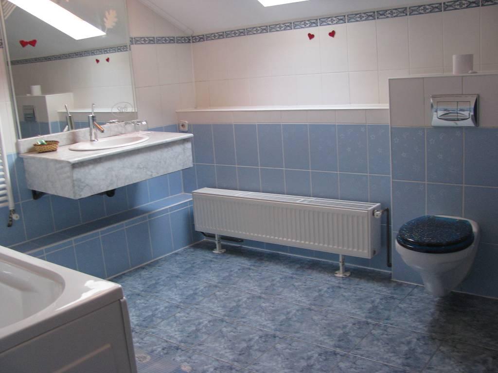 Badkamer,toilet,Douche,loodgieter